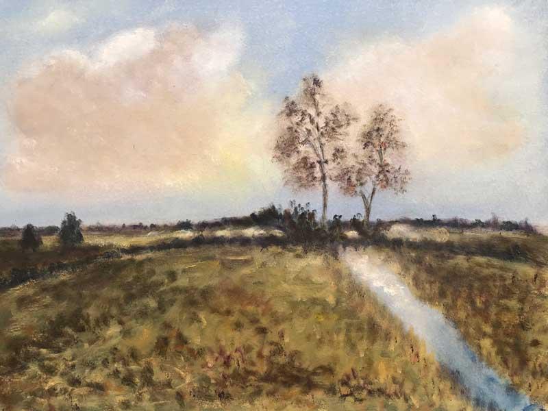Creek Meadow
